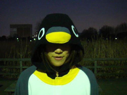 20090224_pengin_making_2
