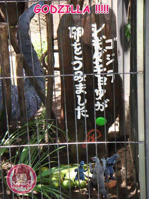20090805_harupi_uenozoo_godzilla_eggs