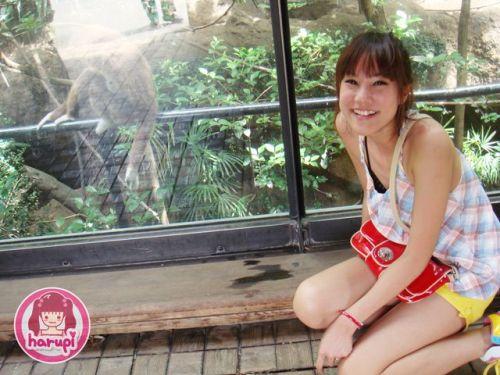 20090805_harupi_uenozoo_monkey
