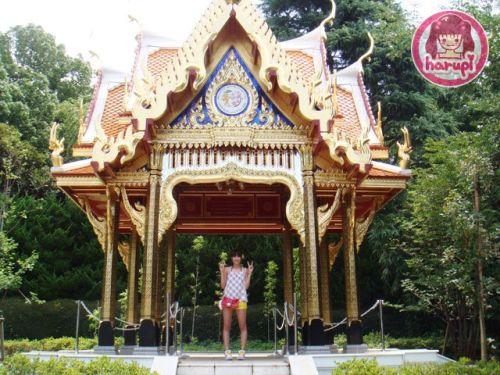 20090805_harupi_uenozoo_thai