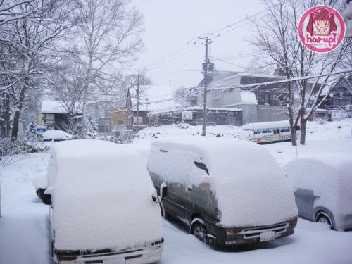 20091215_morning_snow
