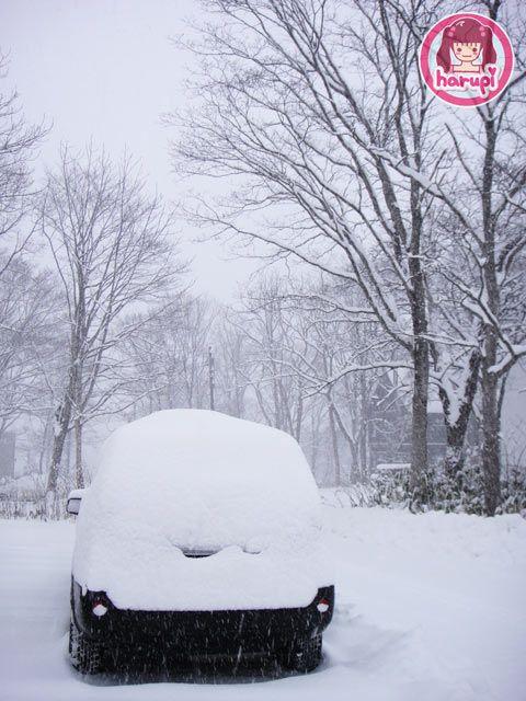 20091215_morning_snow_car