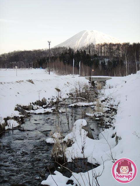 20091216_niseko_nature