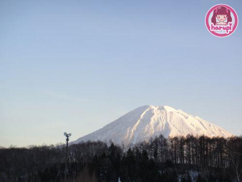 20091216_niseko_yotei