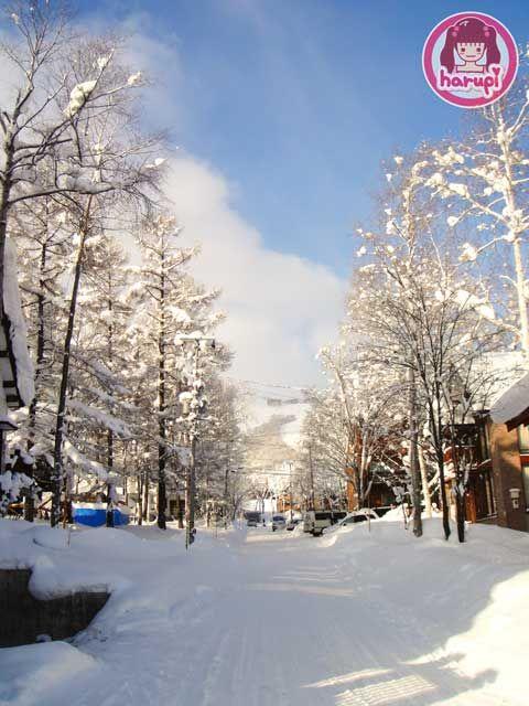 20091226_snow_toyland_1.jpg