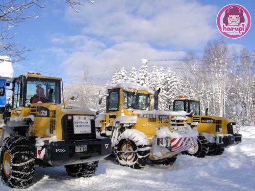 20091226_snow_toyland_10