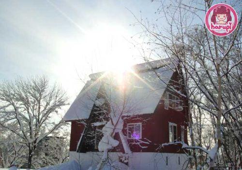 20091226_snow_toyland_12