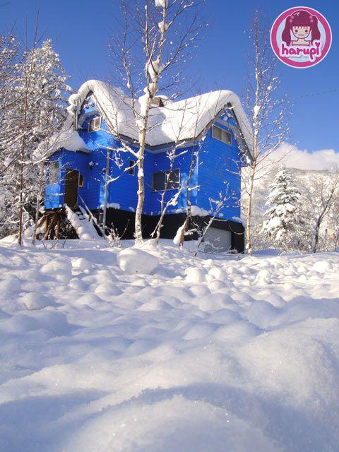 20091226_snow_toyland_13