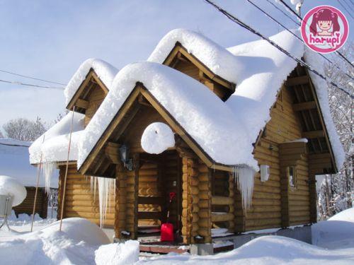 20091226_snow_toyland_14