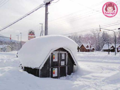 20091226_snow_toyland_15