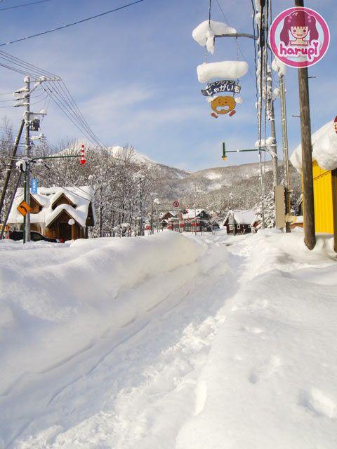 20091226_snow_toyland_16
