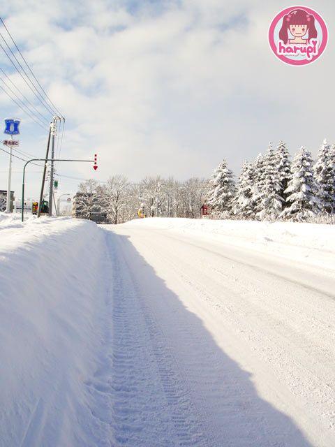 20091226_snow_toyland_2