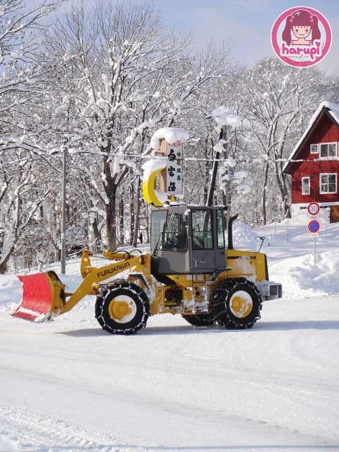 20091226_snow_toyland_5
