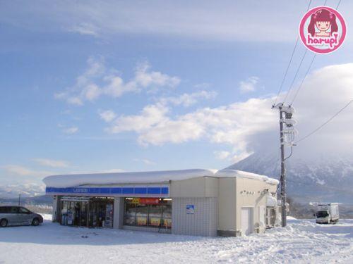 20091226_snow_toyland_6