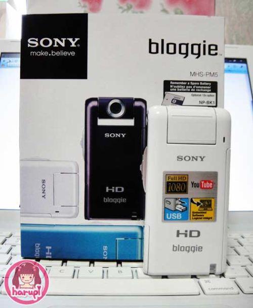 20100219_bloggie.jpg