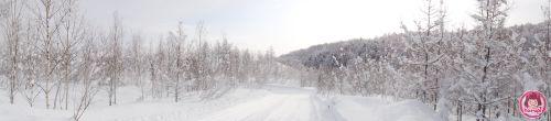 20100309-snow-view.jpg
