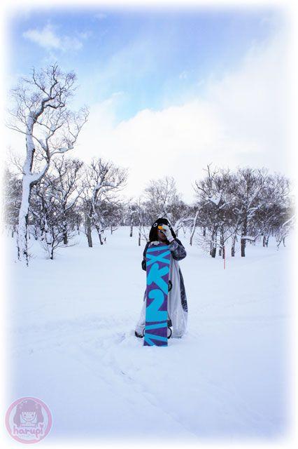 Snowboard Pengin in Niseko