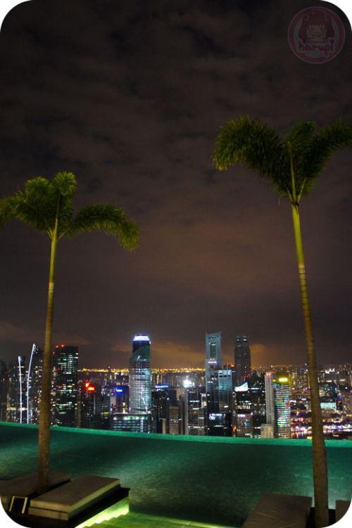 Marina Bay Sands - night sky park, sky pool