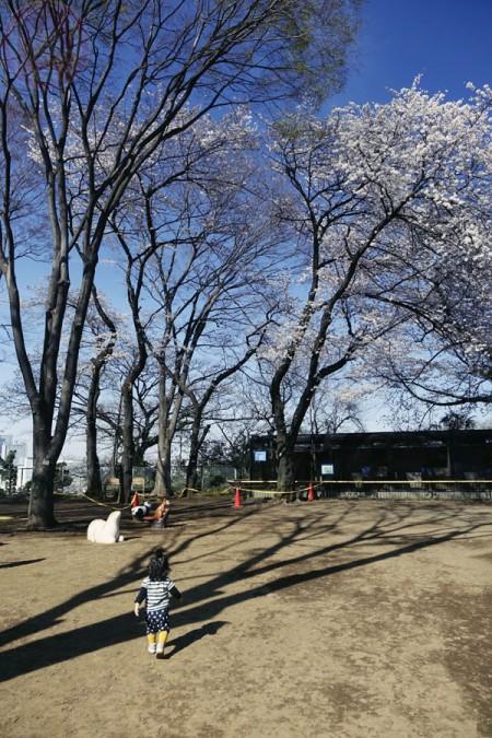 Yumemigasaki Zoo Park 夢見ヶ崎動物公園