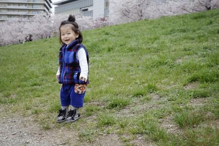 Sakura along Tamagawa riverside 多摩川の河原でお花見
