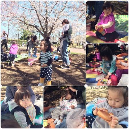 Picnic at Yumemigasaki Zoo Park 夢見ヶ崎動物公園でお花見ピックニック