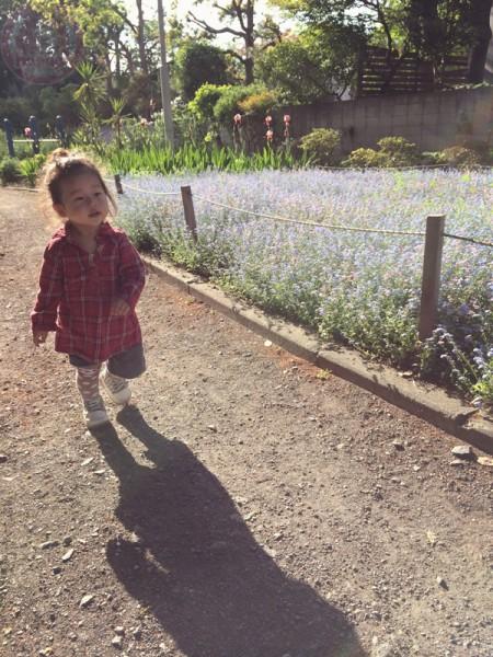 Walking around the flower garden while listening to the birds chirp