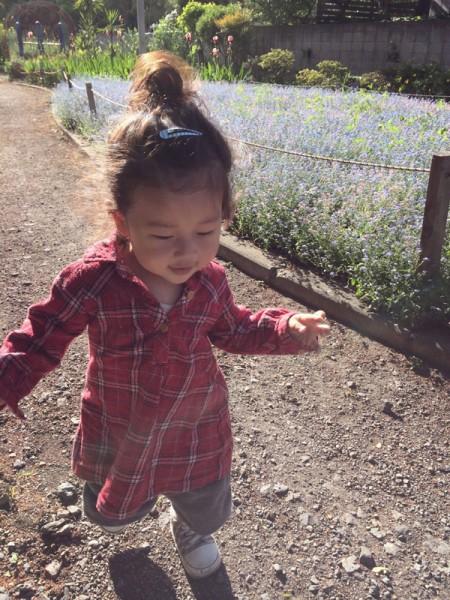 Yuto running at the flower garden