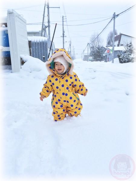 Little-big-boss walking in the snow