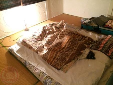 Nice tatami room at Ran's