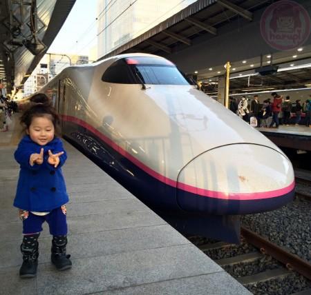Back in Tokyo station - Snapshot with Hayate v(^o^)v